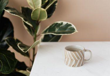 コーヒーカップと植物